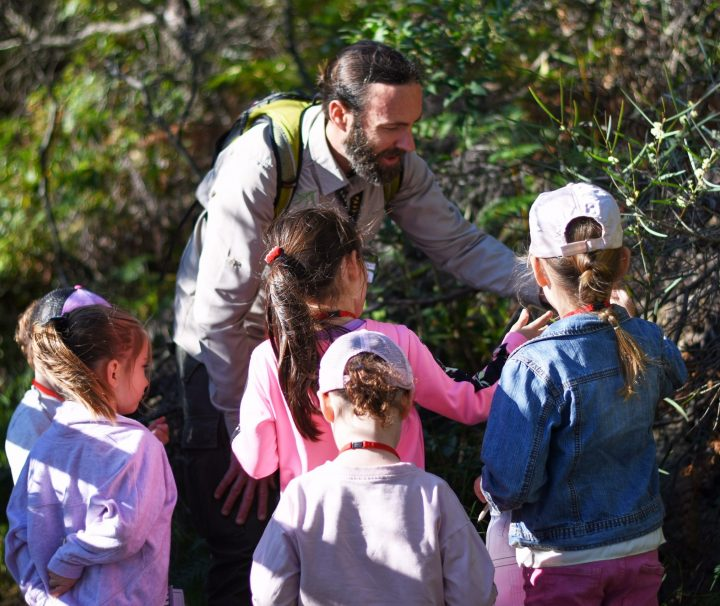 Guide showing children wattle