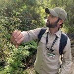 Walk with Alan Toner through Sydney Harbour National Park with EcoWalks Tours