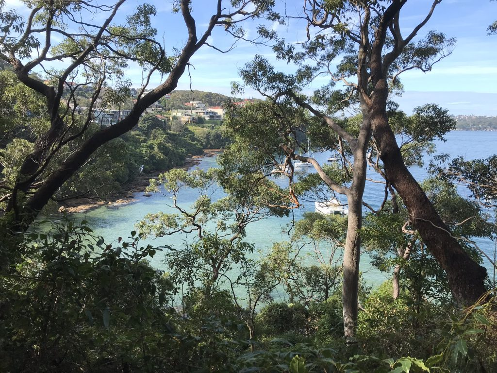 Walk through Sydney Harbour National Park with EcoWalks Tours