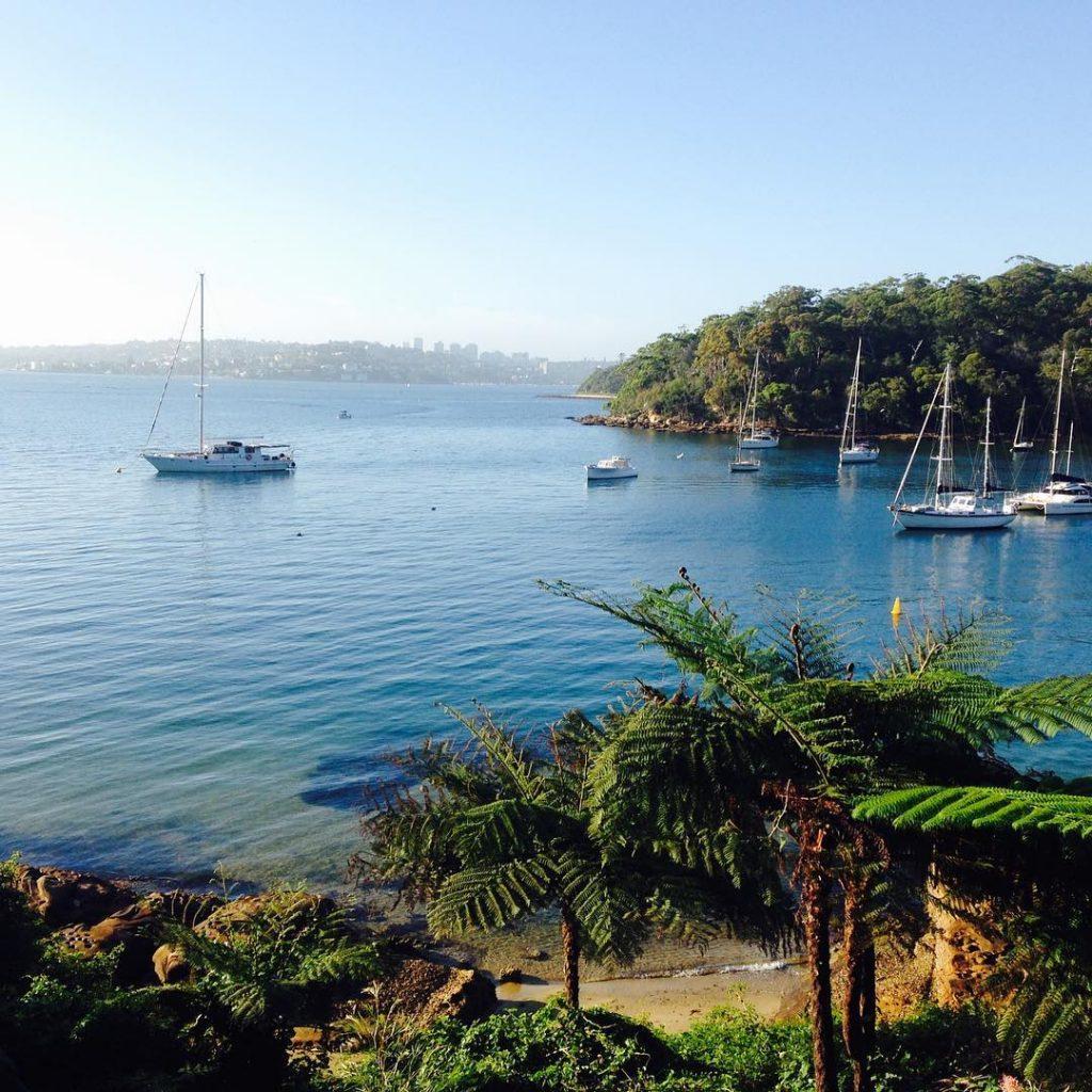 Paradise in Sydney